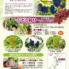 2021年和銅ぶどう園チラシ
